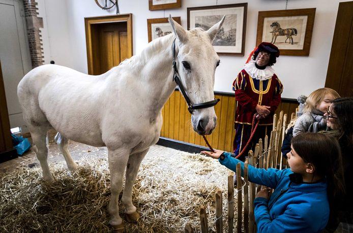 Amerigo, het paard van Sinterklaas, rust uit in het koetshuis van Museum Van Loon.