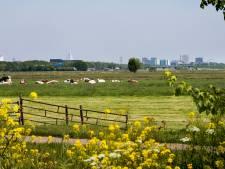 Meer windmolens in polder Rijnenburg? Alleen als er zicht komt op de bouw van huizen