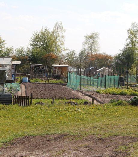 Berkelland: '70 gegadigden voor proef 10 tiny houses-plaatsen in Eibergen'