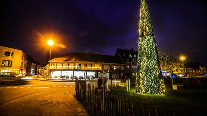 Oudenburg baadt in kerstsfeer: na nieuwe kerstverlichting nu ook dubbel zo grote boom