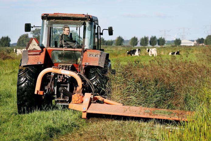 Veehouder Jan Rasenberg zet zijn boerenbedrijf - in samenwerking met Staatsbosbeheer - in voor natuurbehoud.