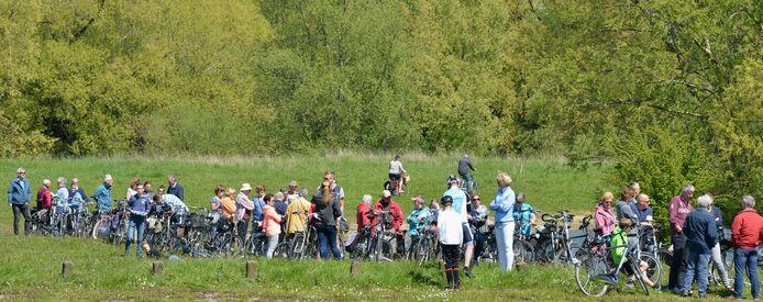 Bij de Tour de Waal op 5 mei varen er altijd extra pontjes over de Waal. Zoals hier bij Heesselt, een enorme fietsfile wacht op de overtocht.