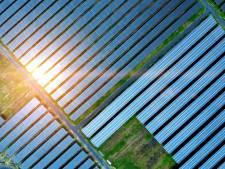 Raalte scherpt richtlijnen voor zonneparken in buitengebied aan: 'Gemeente moet eerder aanwezig zijn'