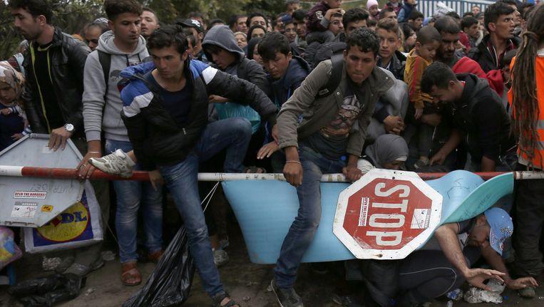Vluchtelingen passeren de Servisch-Kroatische grens bij Berkasovo, 100 kilometer ten westen van Belgrado. De plaats is 'een hel', zegt UNHCR. Beeld AP