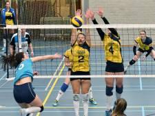 Historische promotie voor de volleybalsters van Havoc