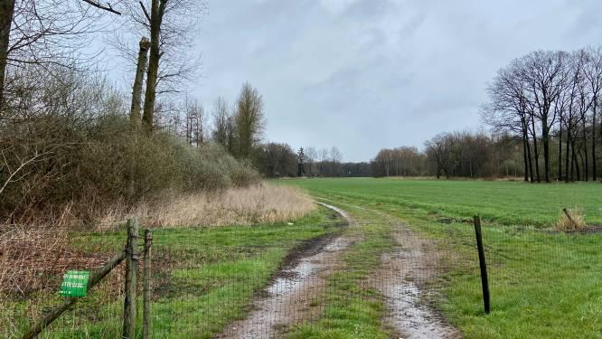 Na klachten van boeren: gemeente vraagt wandelpaden te respecteren en geen afval achter te laten
