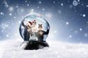 Poseren in een sneeuwbol voor het goede doel.