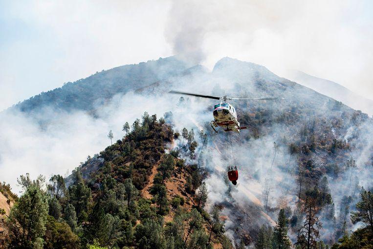 Een helikopter haalt water om bosbrand Ferguson te blussen. Beeld AP