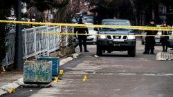 Servische politicus in Kosovo vermoord