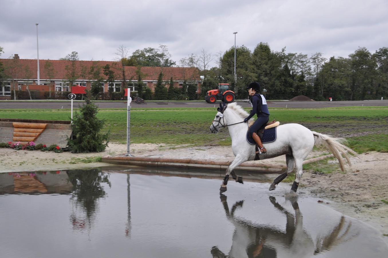 Paard en ruiter aan het werk op de waterpartij van Sport Vlaanderen in Waregem.