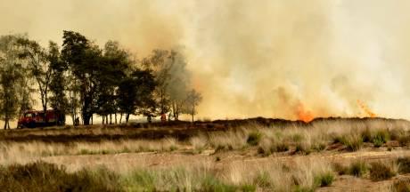 Verwoestende branden moeten verleden tijd zijn, rookverbod op Kalmthoutse Heide: 'Eén peuk kan ramp veroorzaken'