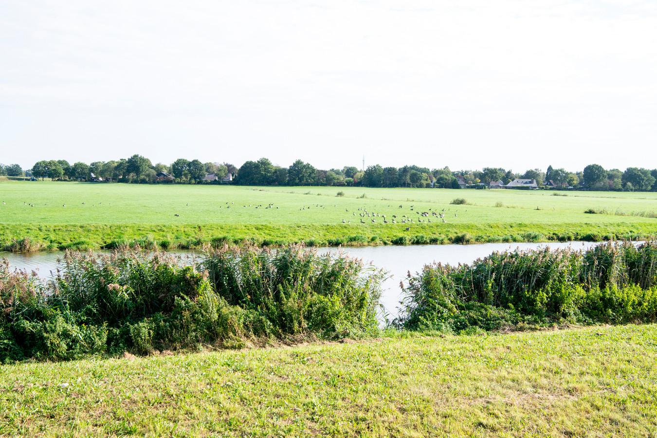Uitzicht vanaf de berm van de N34 in de bocht van de Vecht op de Baalder Uiterwaard. Dit landbouwgebied wordt volgend jaar ingericht als natuurgebied, afgewisseld met natuur-inclusieve landbouw.