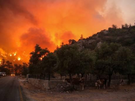 Climat tendu en Turquie où le PKK est accusé d'avoir bouté les feux de forêts meurtriers