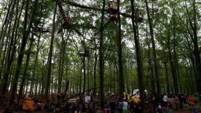 Betoging in Duits 'bruinkoolbos' verboden na dodelijke val van journalist die boomhutdorp bezocht
