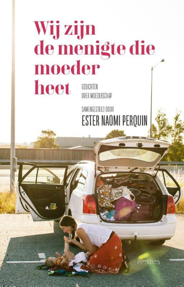 Ester Naomi Perquin, wij zijn de menigte die moeder heet. Beeld rv