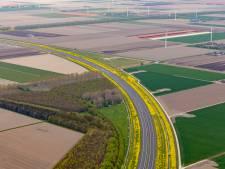 Bouwstop voor Windpark Zeewolde afgewezen, dus de bouw van het grootste windpark van Nederland kan door