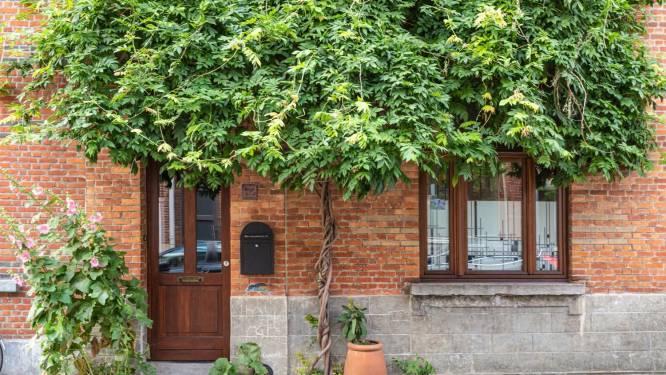 Stad Gent versoepelt regels voor geveltuintjes: zo groot mag stukje groen voortaan zijn