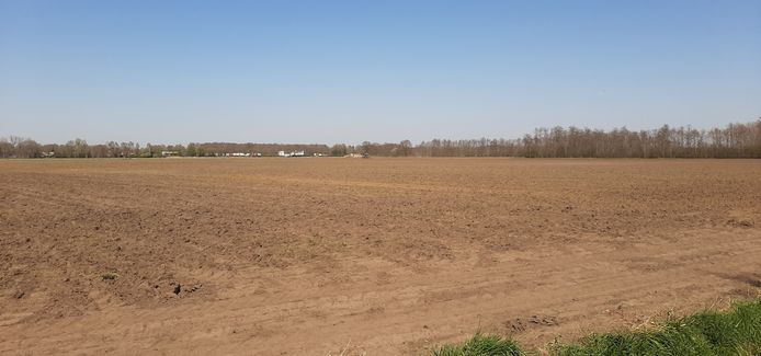 Boerenland waar bedrijventerrein Heesch West gaat komen. Op de achtergrond A59-tankstation De Lucht.