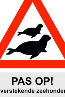 Roep om borden 'Pas op voor overstekende zeehonden' op Brouwersdam