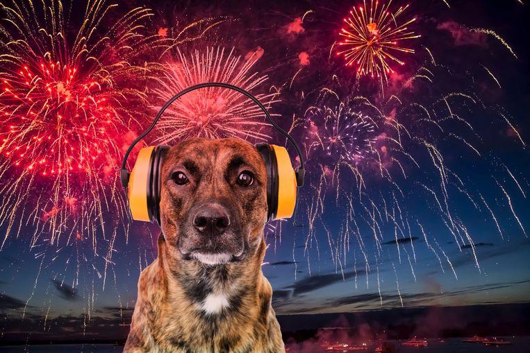 Illustratiebeeld vuurwerk hond