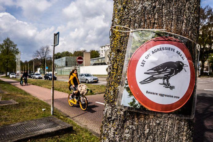 Een van de bordjes waarmee kunstopleiding ArtEZ voorbijgangers waarschuwt voor de duikvluchten van de broedende kraaien.