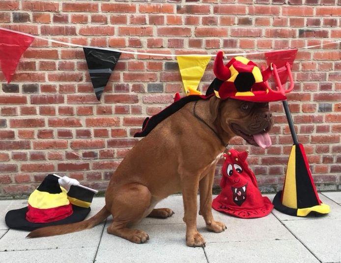 Als de Rode Duivels een match spelen, supportert Isa mee in gepaste outfit
