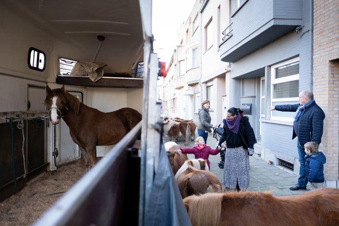 Paarden op de 171ste Jaarmarkt in Willebroek.
