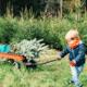 Zó ziet de populairste kerstboom van het internet eruit