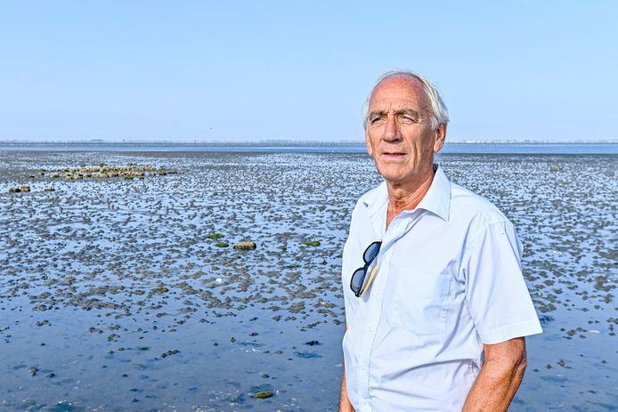 Volgens Bergenaar Bram Aertssen gaat het niet goed met de ansjovis. De oorzaak: gebrek aan zoet water.