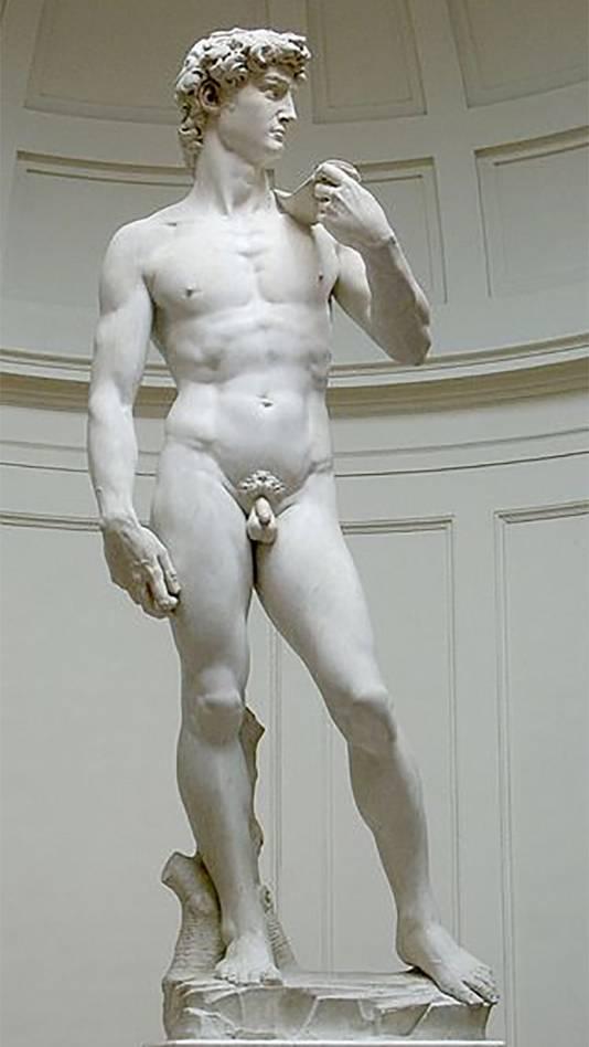'David' van Michelangelo
