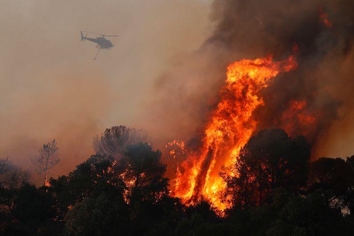 Een bosbrand nabij Cannet des Maures.