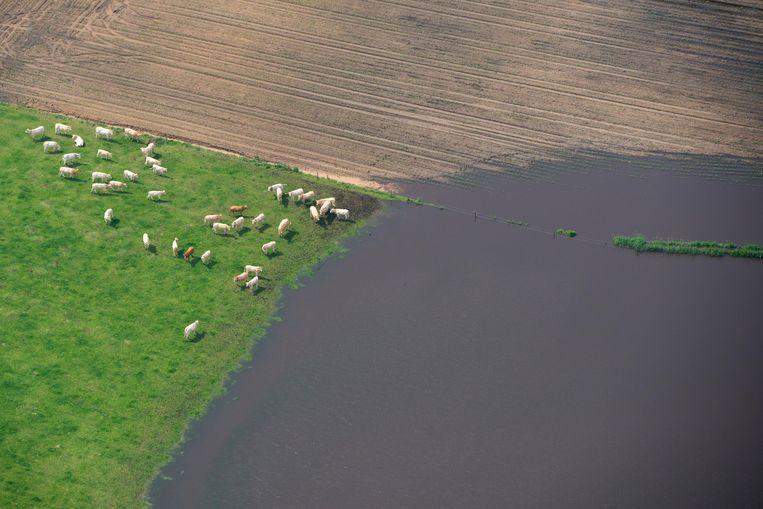 Luchtfoto van ondergelopen weilanden en akkers bij Deurne. Beeld ANP