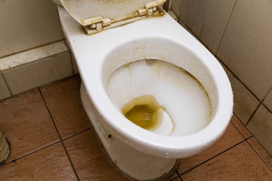 Wat schoonmaakgoeroe Marja Middelkoop betreft, wordt de wc dagelijks schoongemaakt.
