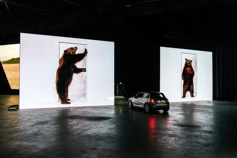 De beren van Marijke van Warmerdam. Beeld Eva Faché
