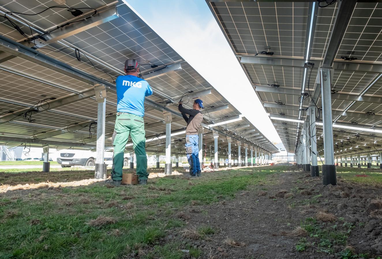 Het bedrijf Palsgaard kon in 2018 nog wel een eigen zonnepark aanleggen bij de vestiging in Zierikzee.