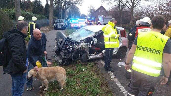 De Golden Retriever na het ongeluk in Duitsland