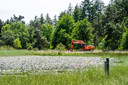 Zoektocht naar Tanja Groen gaat verder op de Strabrachtse Heide in Someren