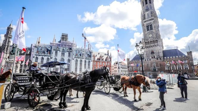 """Brugse koetspaarden verschijnen na meer dan halfjaar weer in het straatbeeld: """"Nu geraken ze wel van hun coronakilo's af"""""""