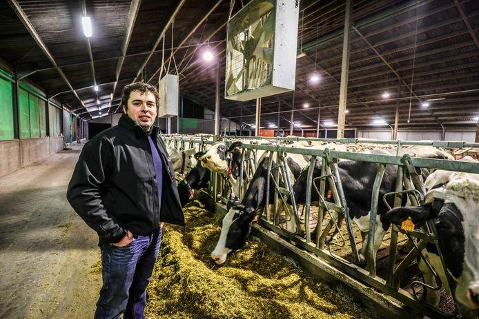 Alexander Maenhoudt in zijn nieuwe koeienstal.