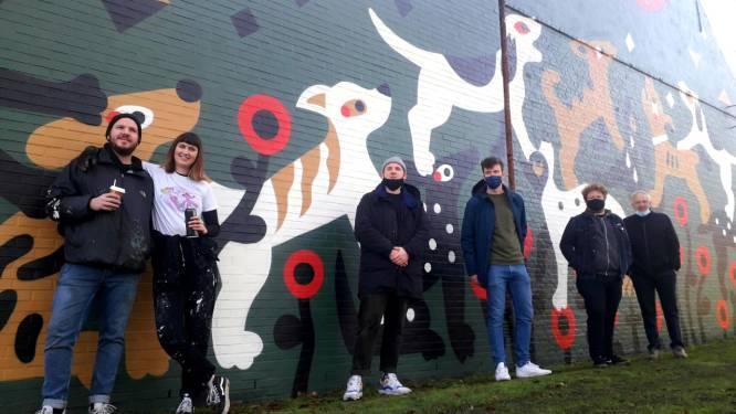 """Muurschildering van 80 vierkante meter aan jeugdhuis in Gierle: """"Geeft extra cachet aan ons dorpsbeeld"""""""