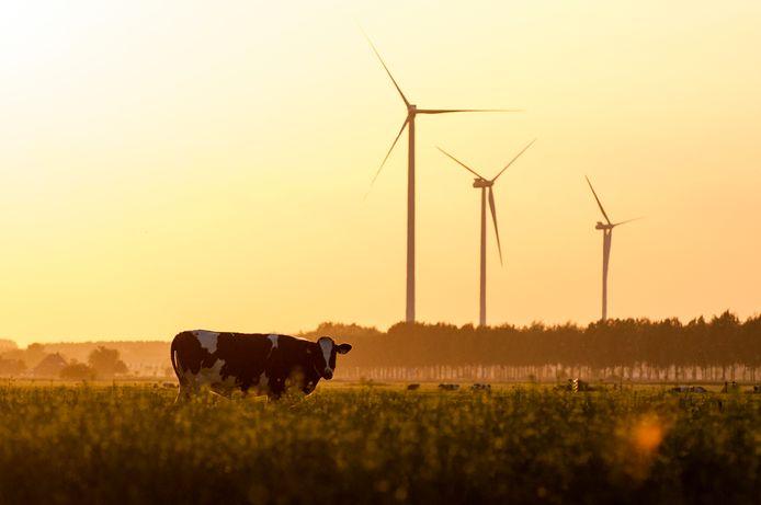Voor de zomer volgend jaar wordt duidelijk hoeveel windmolens er gebouwd kunnen gaan worden.