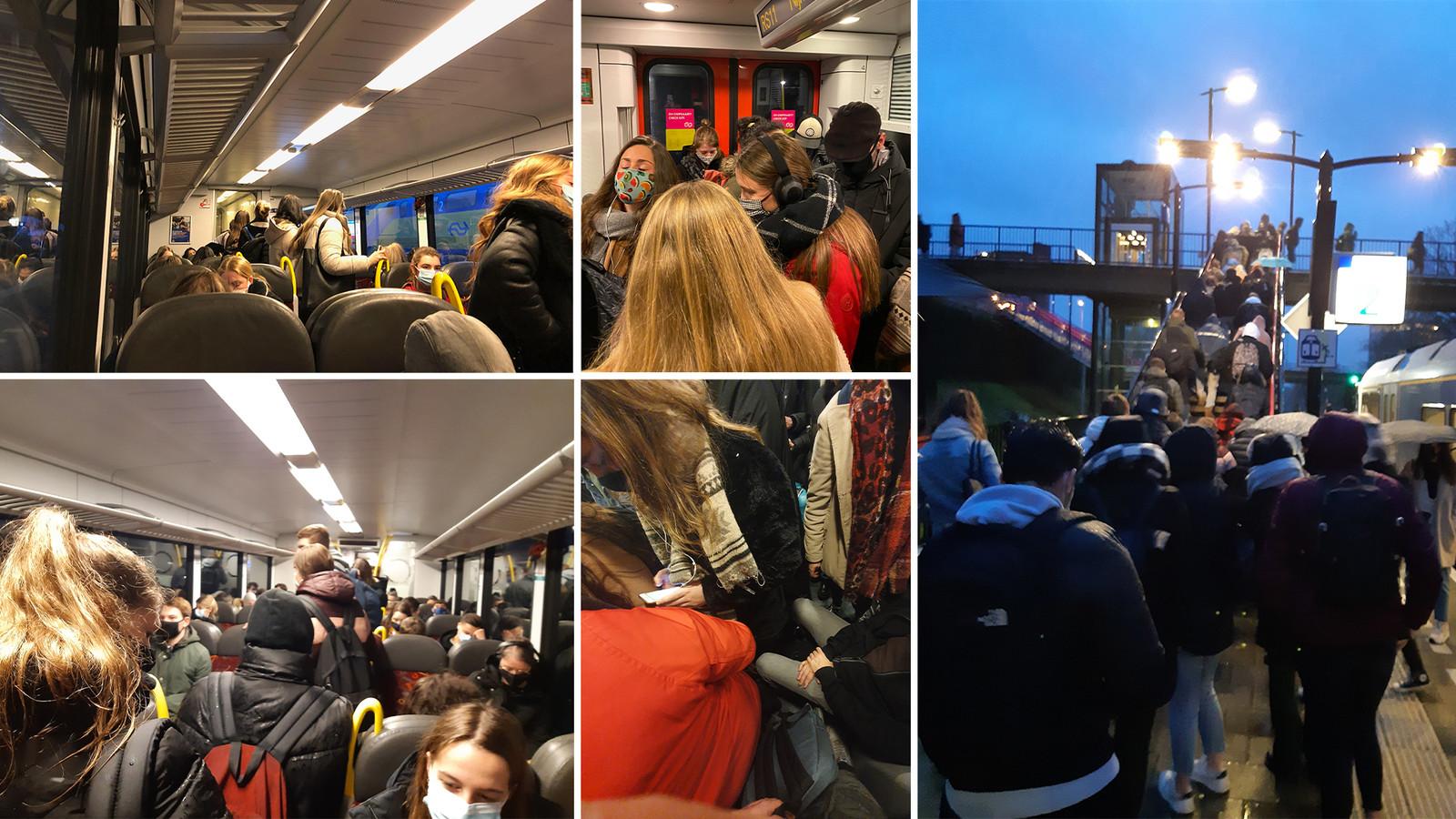 Op deze lezersfoto's zijn overvolle treinen te zien die rijden tussen Boxmeer en Nijmegen. De beelden zijn genomen op verschillende dagen.