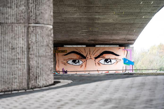 Een van de muurschilderingen die Arnhem overhield aan de vorige editie van de Sonsbeek-beeldententoonstelling. 'Sonsbeek20→24 Force Times Distance – On Labour and its Sonic Ecologies' begint op 2 juli.
