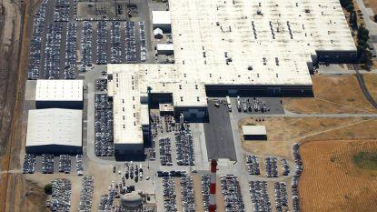 Tesla en het mysterie van de velden vol geparkeerde auto's
