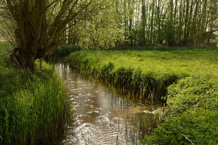 Natuur bij 't Merkske op de grens van België en Nederland.