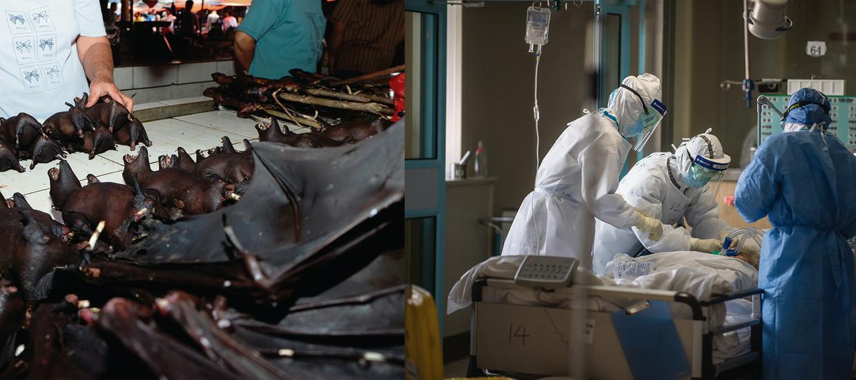 'Of het virus nu uit een lab komt of uit de natuur, China draagt een grote verantwoordelijkheid.' Beeld HUMO