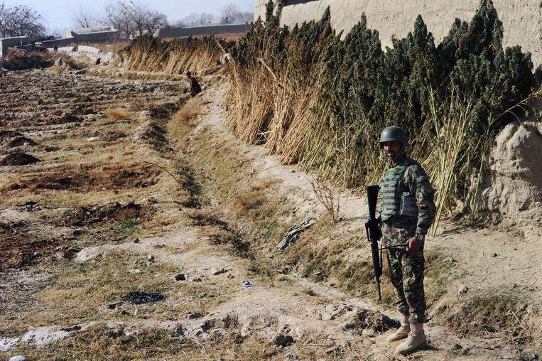 Een Afghaanse soldaat bewaakt een post in Zuid-Afghanistan.