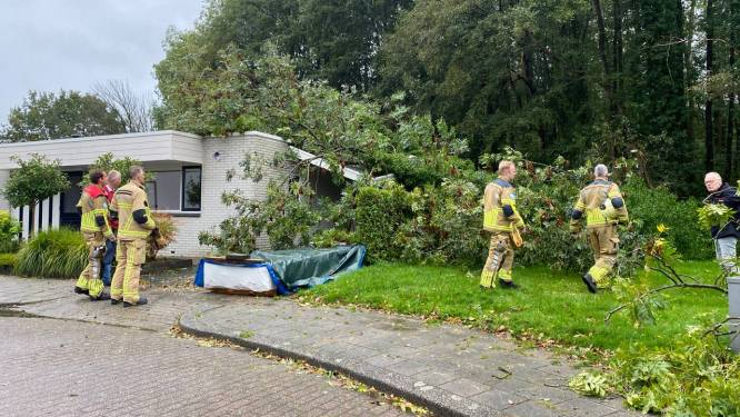 Noodweer zorgt wederom voor problemen: bomen vallen op Hengelose woning