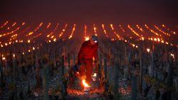 Vuurpotten tegen de nachtvorst in Chablis