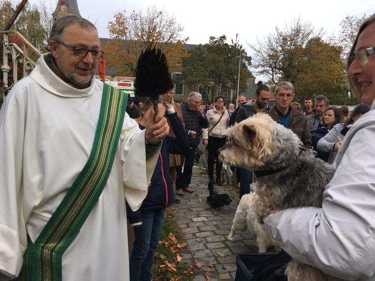Dierenwijding in Oostakker: de diaken zegent alle aanwezige honden.